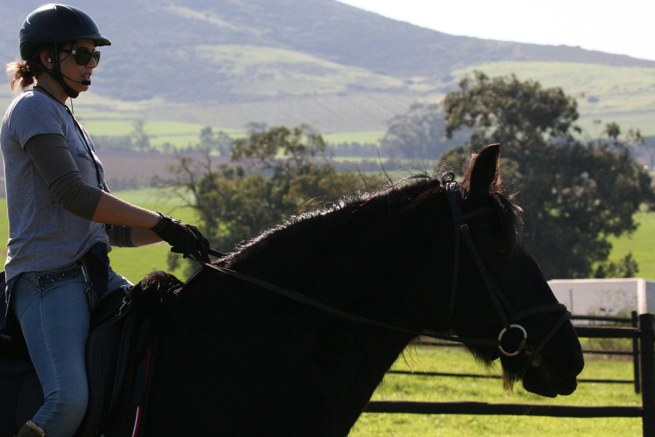 Equestrian coaching headset