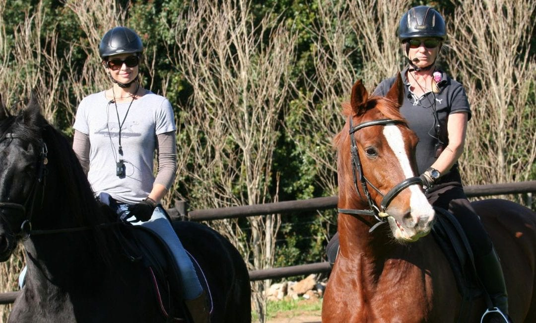 BLOG: Benefits of using an equestrian wireless training system